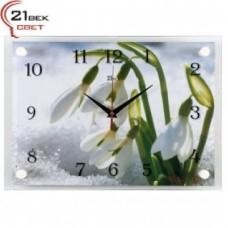 21 Век Часы настенные 2535-450